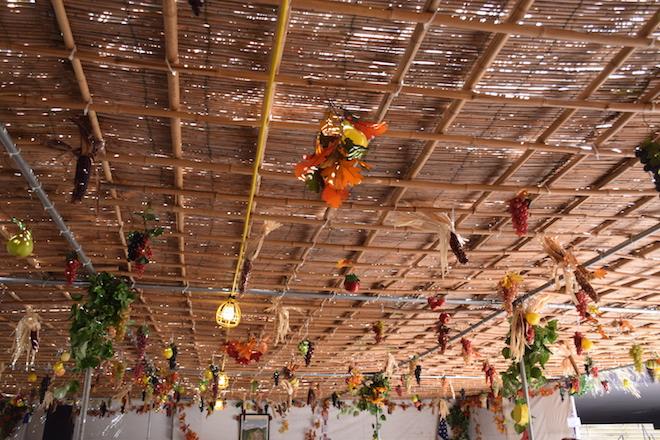 Sukkah ceiling